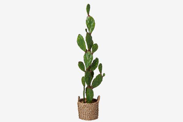Artificial Cactus In Basket Green/Brown
