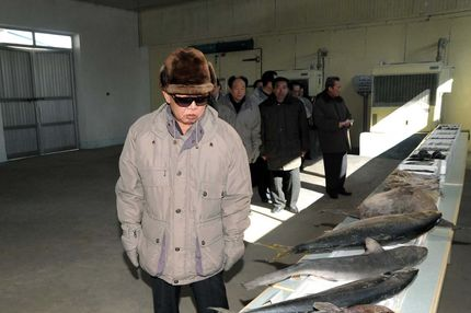 This undated picture released from North Korea's official Korean Central News Agency on February 4, 2010 shows North Korean laeder Kim Jong Il inspecting the Wonphyong Taehung Fishery Station in Kumya County, South Hamgyong Province in North Korea.   AFP PHOTO / KCNA via KNS (Photo credit should read KNS/AFP/Getty Images)