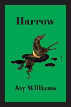Harrow by Joy Williams