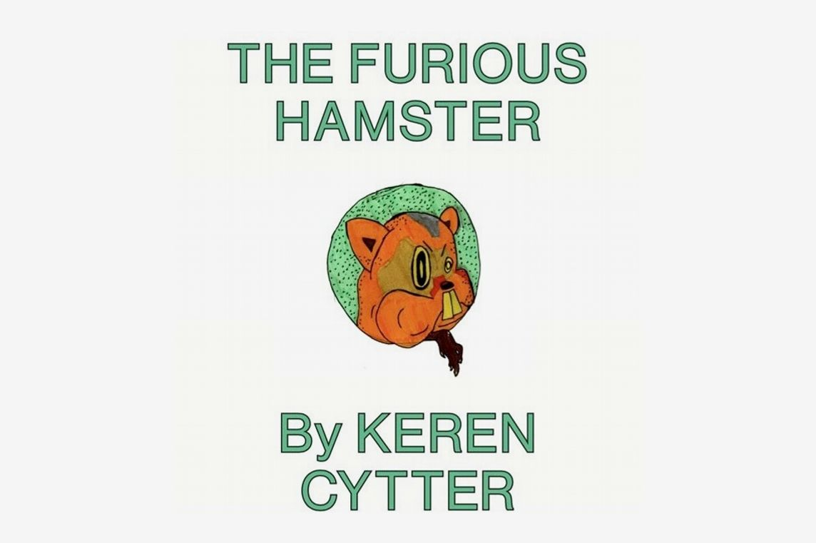 The Furious Hamster, by Keren Cytter