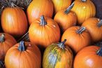 Eat Well: Pumpkins and Pasta