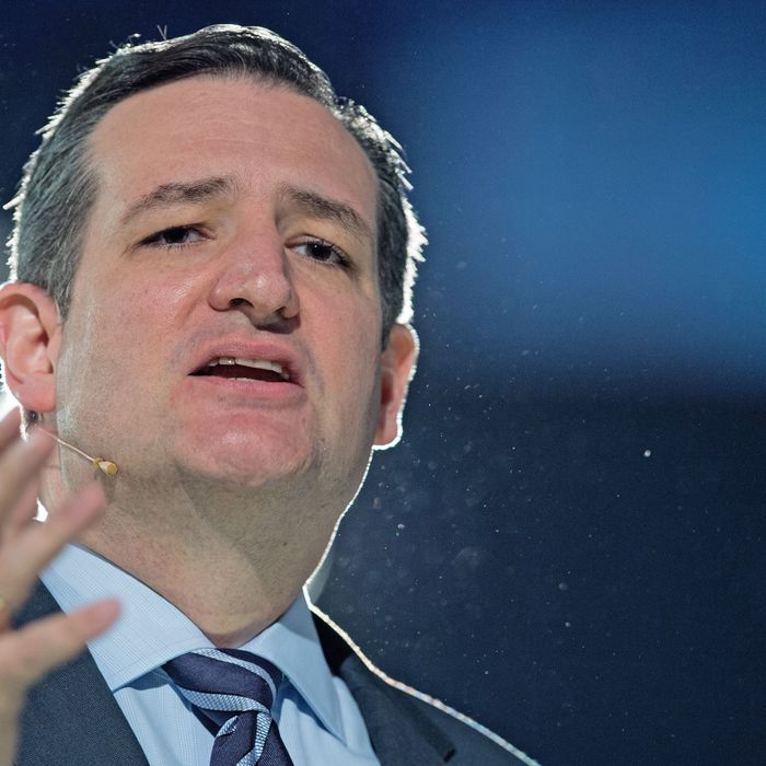 US Senator Ted Cruz(R-TX) delivers remarks announcing his candidacy for the Republican nomination to run for US president March 23, 2015, at Liberty University in Lynchburg, Virginia. AFP PHOTO/PAUL J. RICHARDS (Photo credit should read PAUL J. RICHARDS/AFP/Getty Images)
