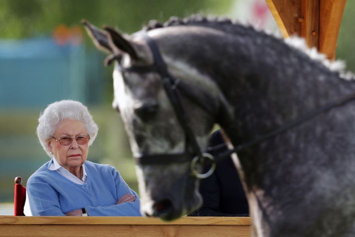 Queen Elizabeth at the Royal Windsor Horse Show.
