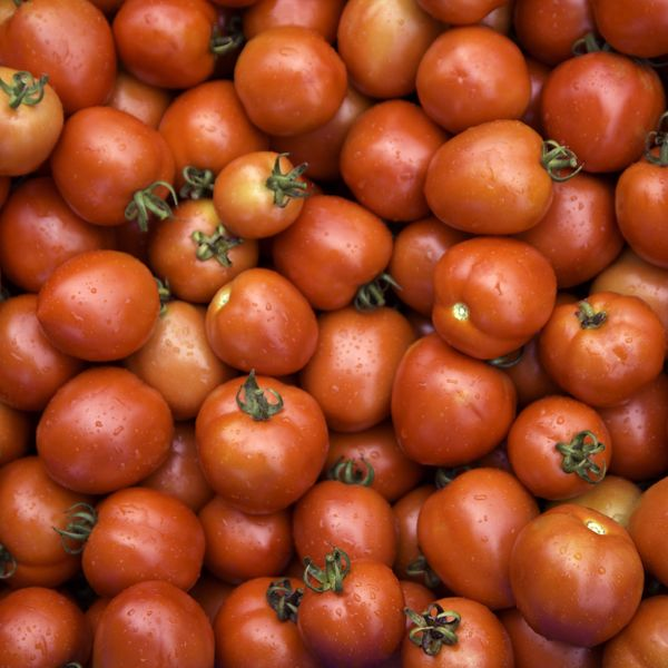 Scientists Have Figured Out How to Make Electricity Out of Unused Tomatoes
