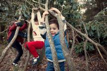 Kids climbing on trees, vines