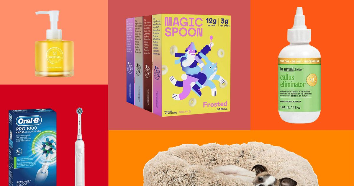 What Strategist Readers Are Buying: Dog Beds and Pillows