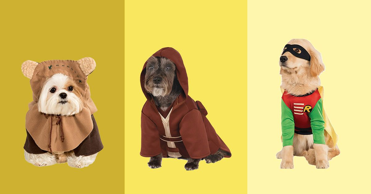The Best Dog Halloween Costumes, According to Hyperenthusiastic Reviewers