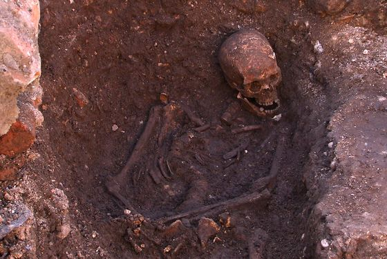 Leicester, United Kingdom. 4th February 2013 -- Human remains found in trench one of the Grey Friars dig. Images used with consent from the University of Leicester. -- King Richard the III is the last King of England to have died in battle. He died in the Battle of Bosworth on 22nd August 1485. University of Leicester excavated the human remains and claim that DNA tests have proven positive for the King.