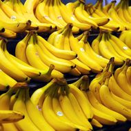 Scientists May Have Discovered a Way to Keep Bananas Fresh at Least Twice As Long