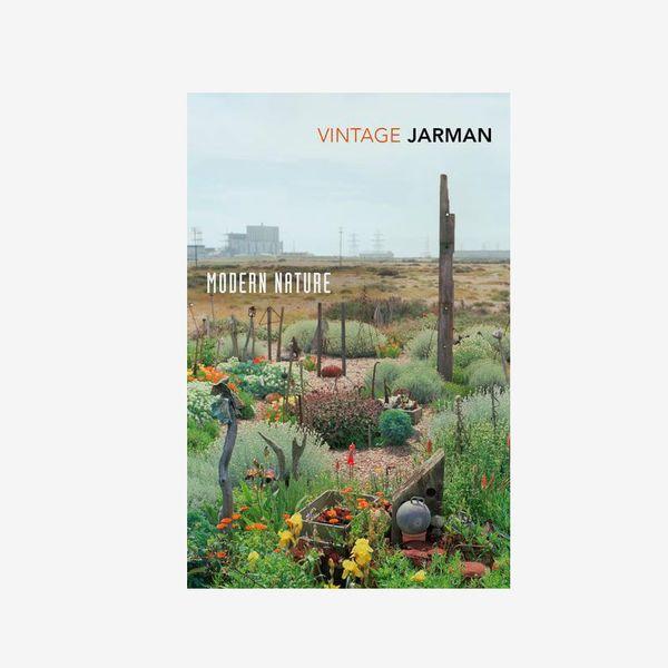 'Modern Nature,' by Derek Jarman