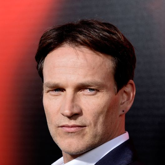 Actor Stephen Moyer attends the premiere of HBO's 'True Blood' Season 6 at ArcLight Cinemas Cinerama Dome on June 11, 2013 in Hollywood, California.