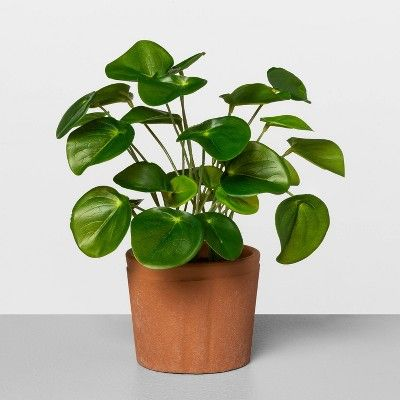 Hearth & Hand With Magnolia 9-Inch Faux-Pilea Potted Plant