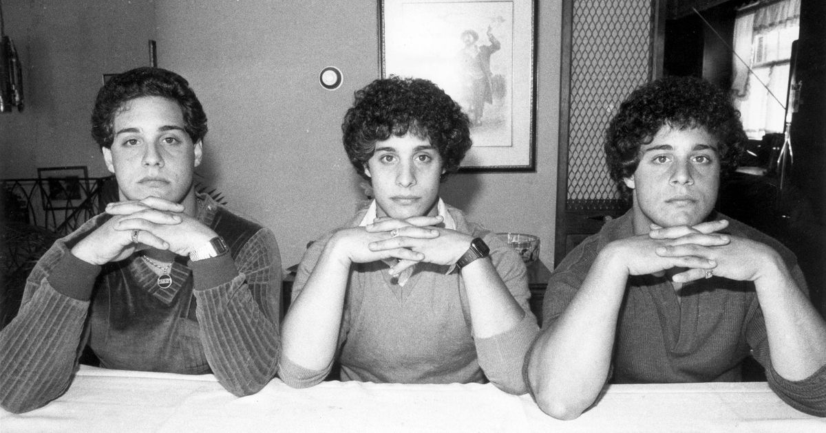 'Three Identical Strangers' Is the Best Film I've Ever Hated