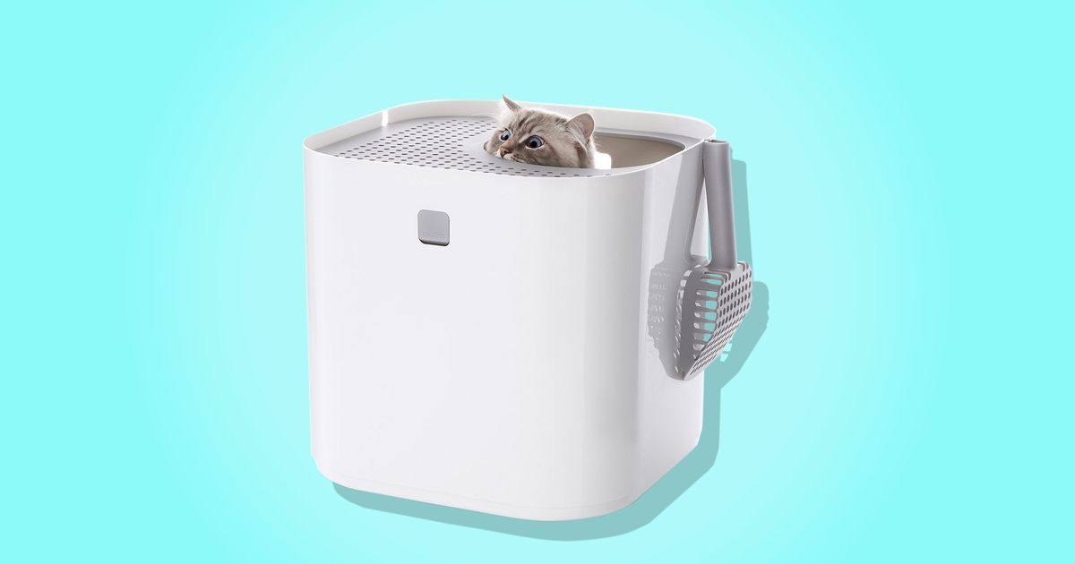 best cat litter box modkat review 2017. Black Bedroom Furniture Sets. Home Design Ideas