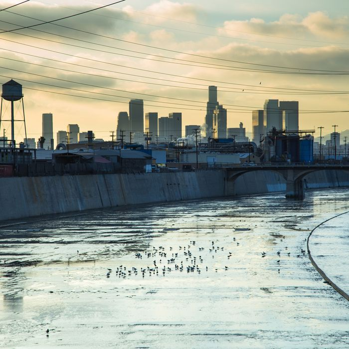 Los Angeles River and Downtown Skyline