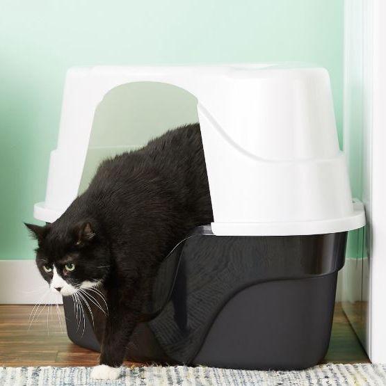 Caja de arena para gatos de esquina avanzada Just for Cats de Nature's Miracle