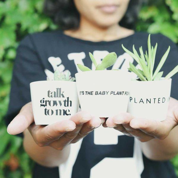 Plant Economy Baby Plant Growth Set