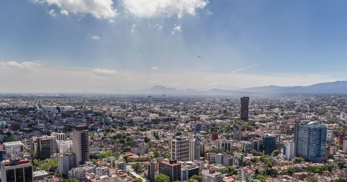 A Gallery Owners' Guide to Mexico City