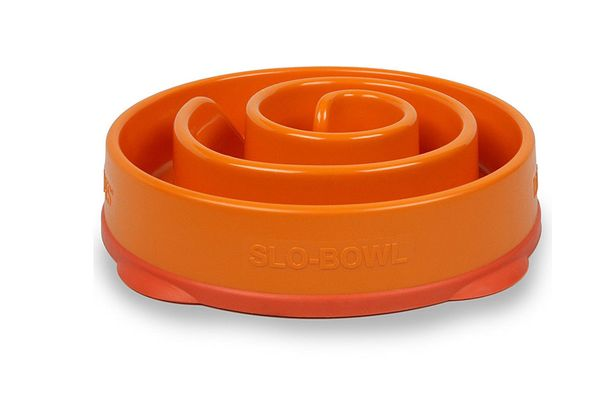 Outward Hound Fun Feeder Slow Feed Dog Bowl