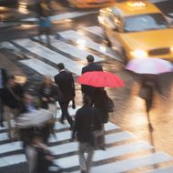 USA, New York state, New York city, pedestrians with umbrellas on zebra crossing