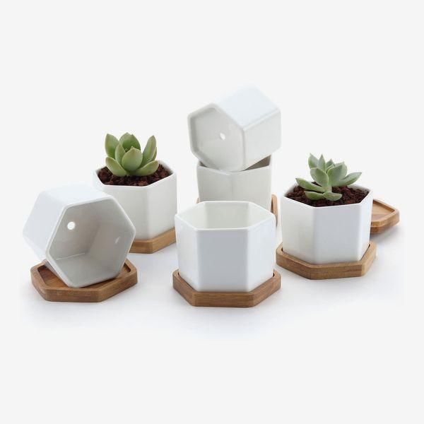 T4U 7CM Ceramic Six Sizes Succulent Plant Pot