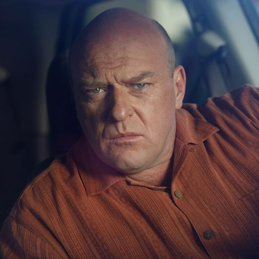 Hank Schrader (Dean Norris) - Breaking Bad - Season 2, Episode 2 - Photo Credit: Cathy Kanavy/AMC