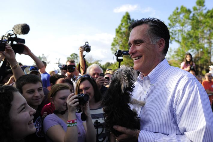"Republican presidential hopeful Mitt Romney holds a small dog handed over by a supporter after speaking at a ""Florida housing event"" in front of a foreclosed house in Lehigh, Florida, January 24, 2012. Florida will hold its Republican primary on January 31, 2012."
