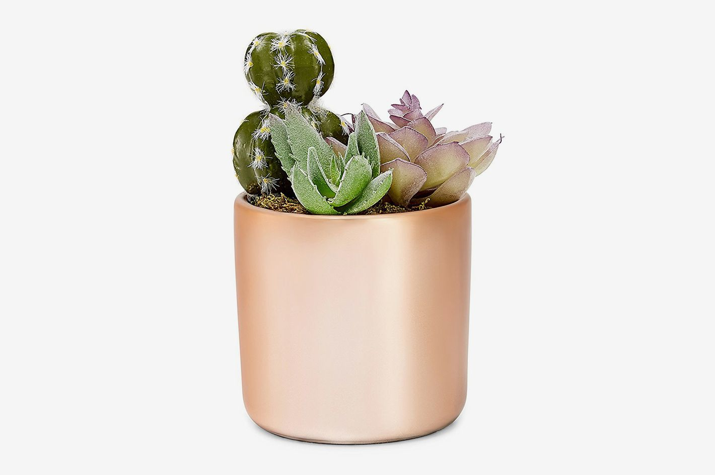 W.W. Industries Rose Gold 4-inch Succulent Plant Pot