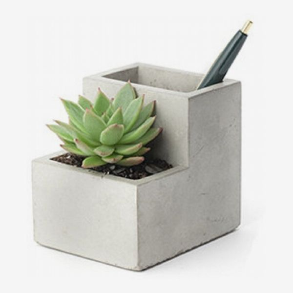 Kikkerland Concrete Desktop Planter (Small)
