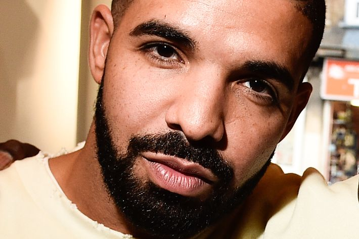 Drake endorses your feelings. Photo: George Pimentel/WireImage