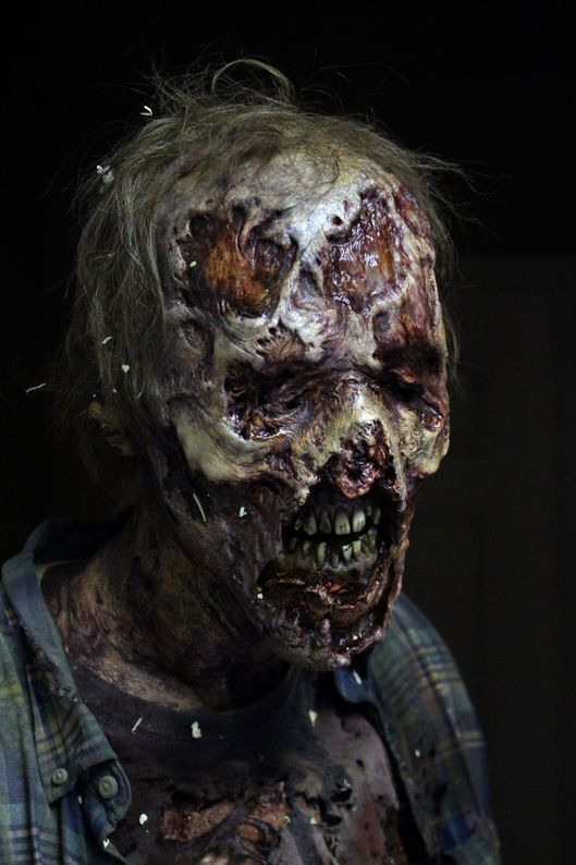 Walker - The Walking Dead _ Season 6, Episode 3 - Photo Credit: Greg Nicotero/AMC