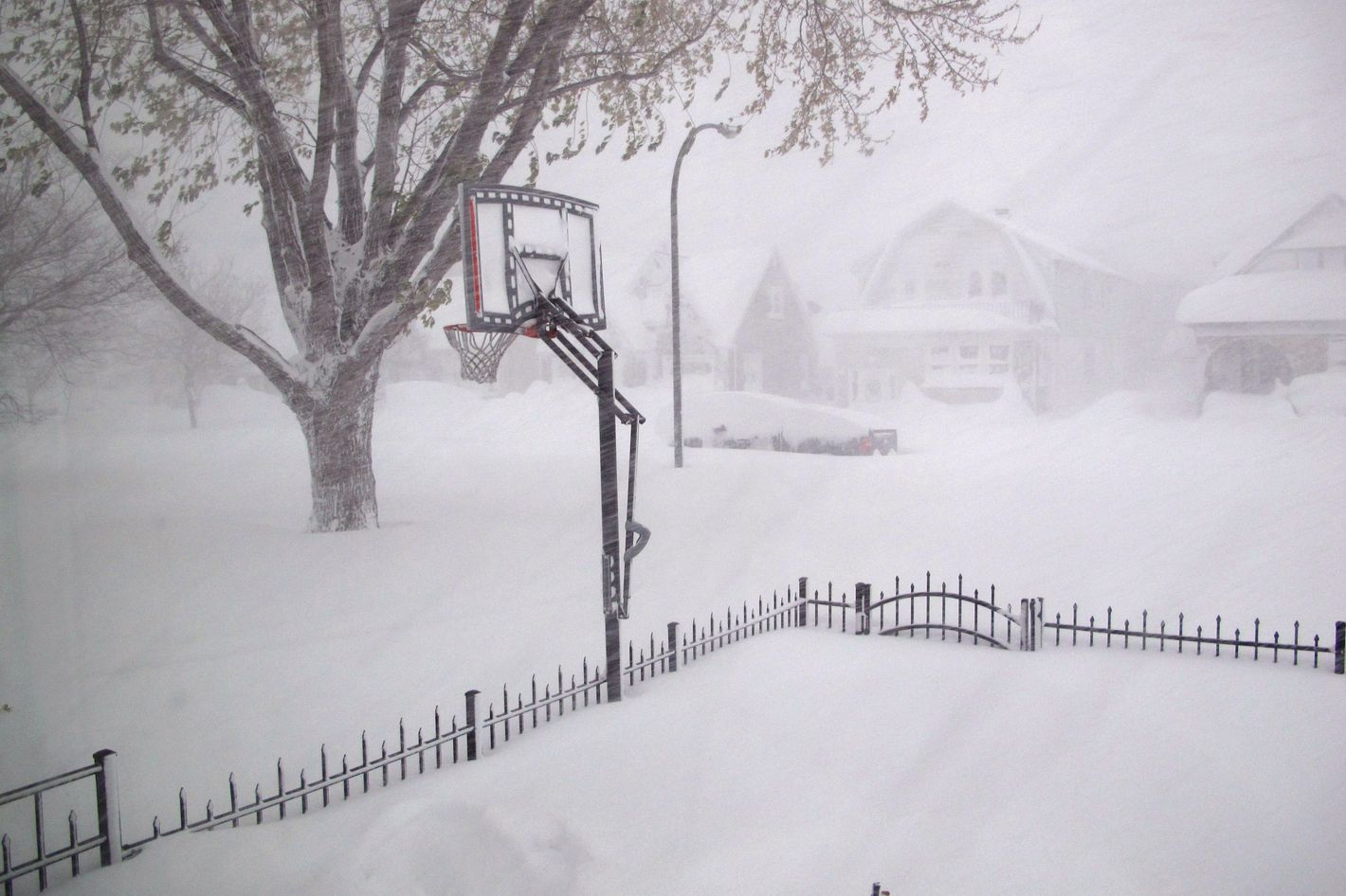 crazy photos from the snowstorm that pummeled western new york