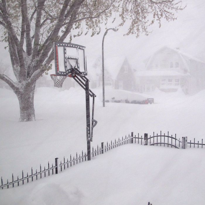 18 Nov 2014, Buffalo, New York State, USA --- Heavy snow covers the street on Tuesday, Nov. 18, 2014 in Buffalo, N.Y., Parts of New York are measuring the season's first big snowfall in feet, rather than inches, as nearly 3 feet blanketed the Buffalo area Tuesday, forcing the closure of a 105-mile stretch of the state Thruway. The National Weather Service says a foot to almost 3 feet of snow has fallen on areas south and east of the city. (AP Photo/ Carolyn Thompson) --- Image by ? Carolyn Thompson/AP/Corbis