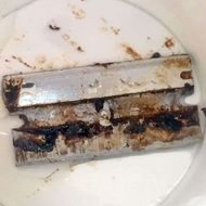 Girl Finds Razor Blade in Her Soda at Wendy's