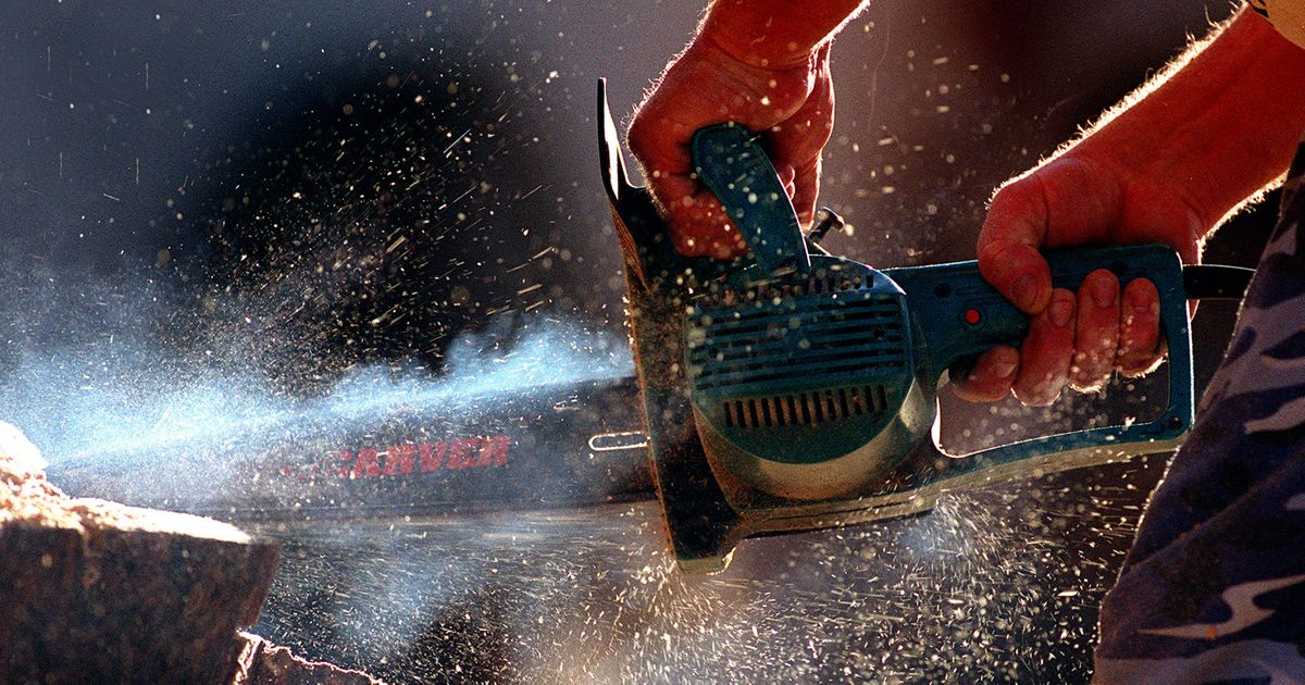 18 Best Chainsaws 2018
