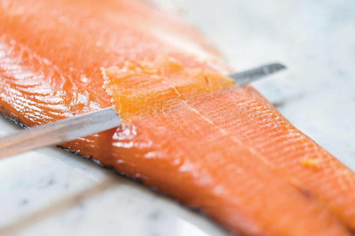 Sadelle's salmon.
