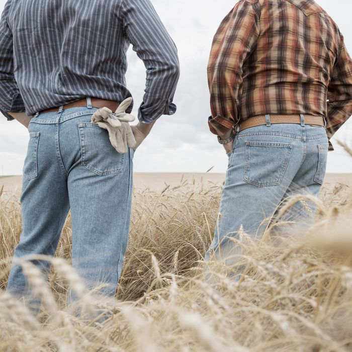 The Phenomenon of 'Bud Sex' Between Straight Rural Men