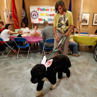 To kick off the Month of the Military Child, first lady Michelle Obama and her dog Bo participate in a pre-Easter celebration with military families and children at the Fisher House on Walter Reed National Military Medical Center April 4, 2012 in Bethesda, Maryland. The Fisher Houses are