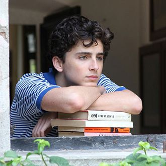 Call Me By Your Name's Sufjan Stevens Songs Are Here