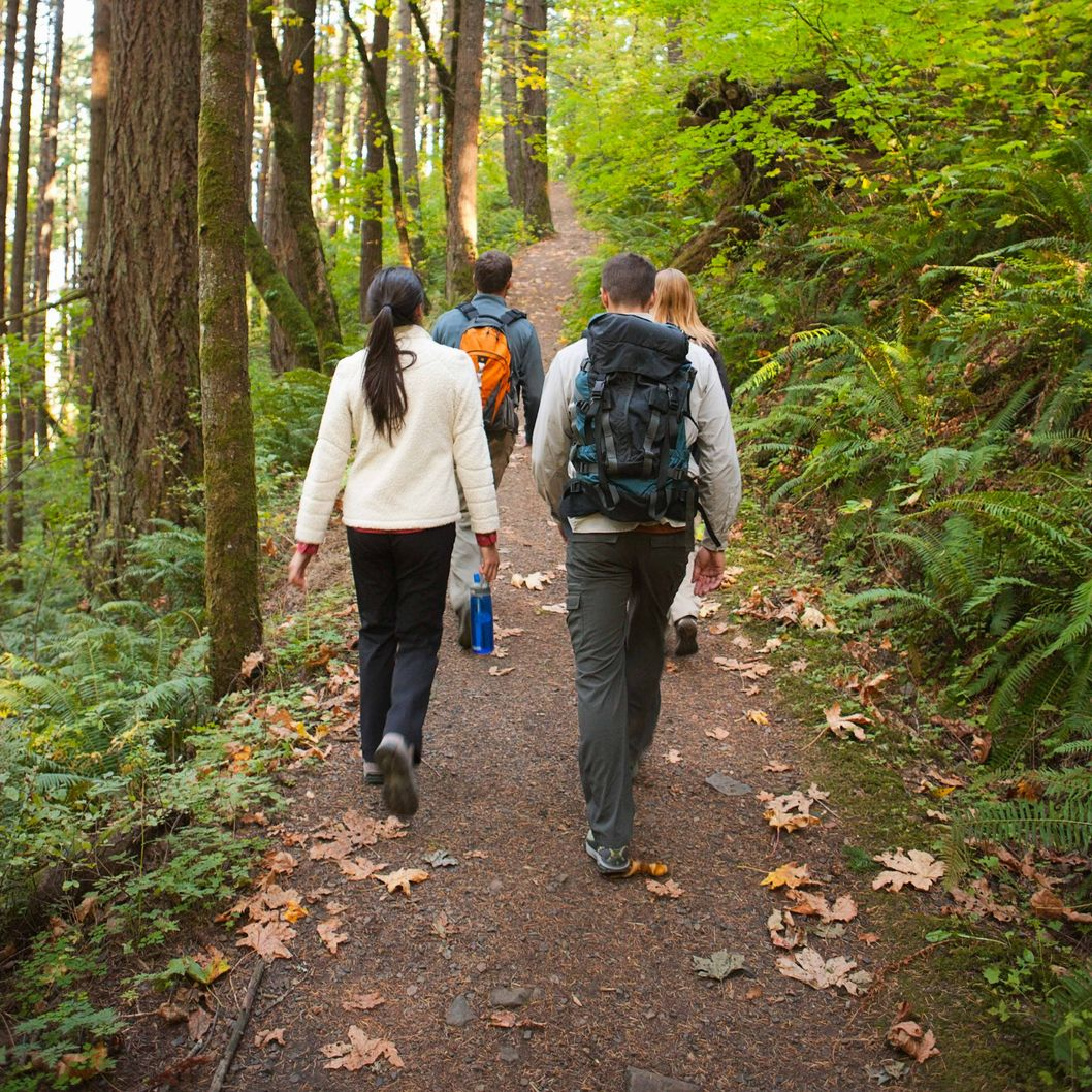 Nature Walks As Antidepressants -- Science of Us