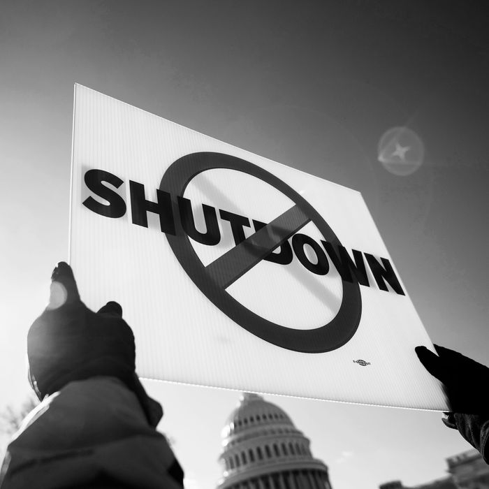 A scene from an anti-government shutdown protest in Washington.