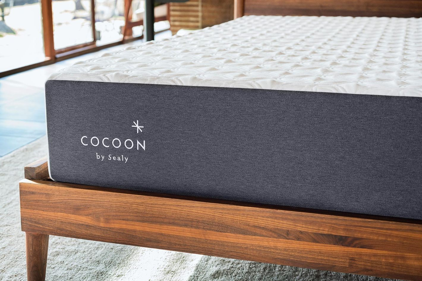Cocoon Chill