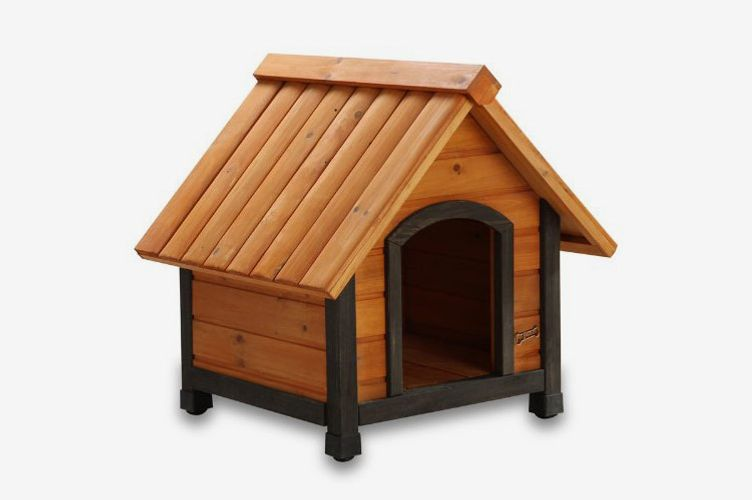 10 Best Outdoor Dog Houses and Kennels 2018 Building Design For Dogs Dog Houses Two Html on dog kennel designs for two dogs, dog houses for multiple dogs, dog houses for big dogs, mutiple dog house dogs, large dog houses for two dogs, dog house kits for two dogs, building a dog house for two dogs, insulated dog houses for two dogs, double dog houses for large dogs, dog house for dogs 3,