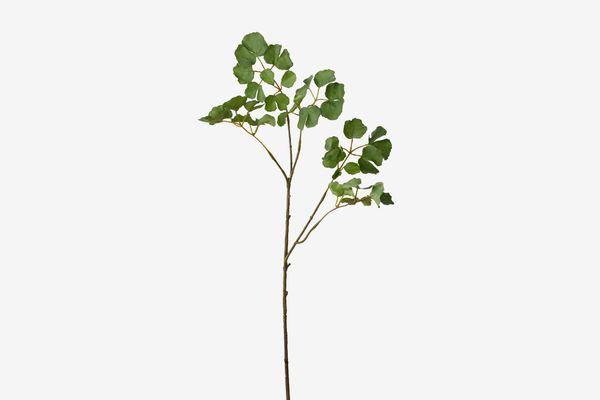 Terrain Faux-Ginkgo-Leaf Spray