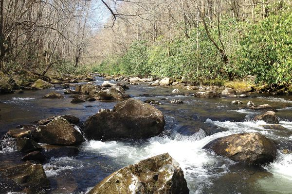 13.47 Acres on Wide Trout Stream