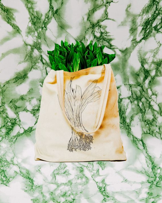 A tote bag full of ramps, with a picture of ramps on it, against pale green marble background