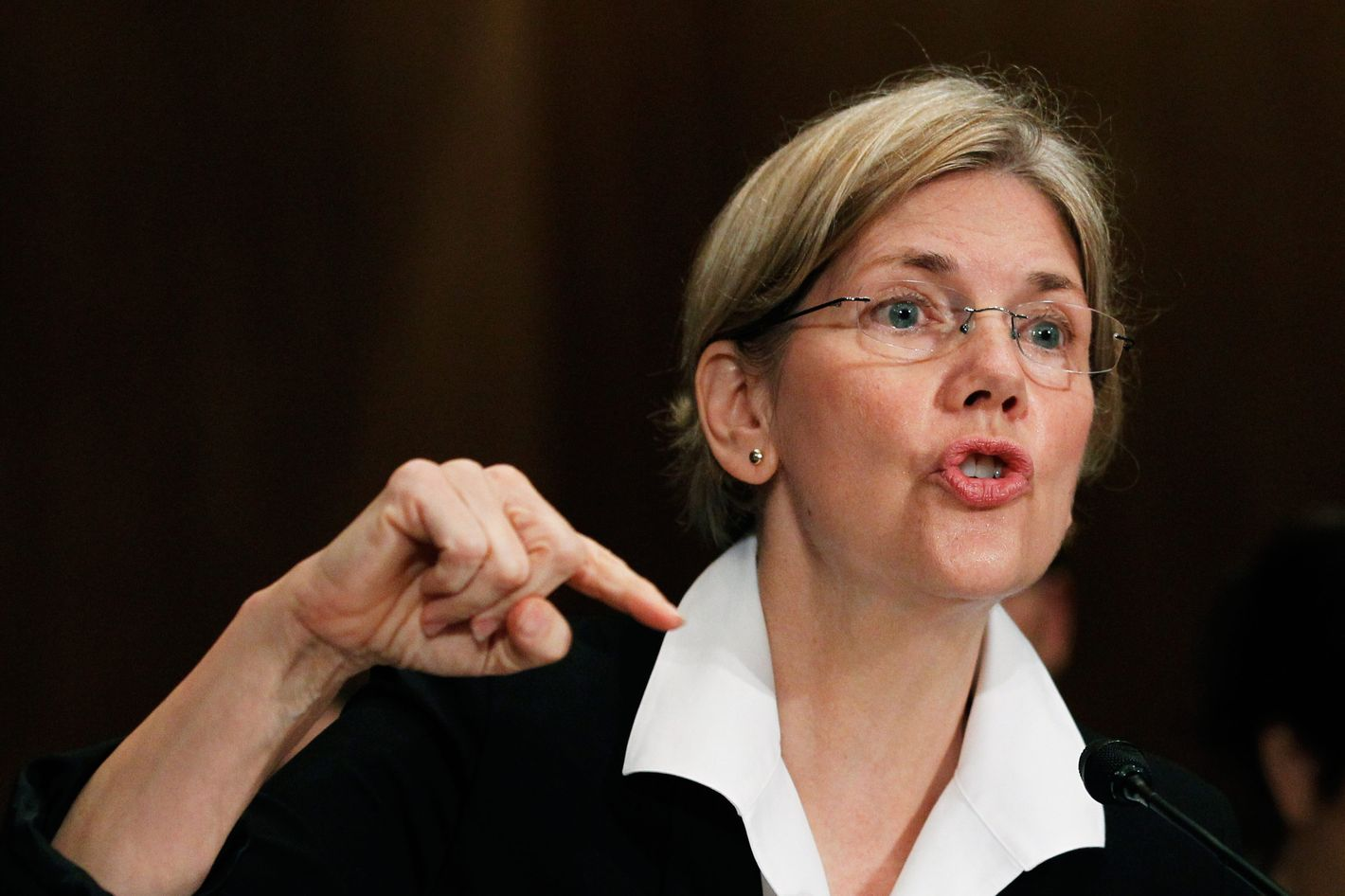 Elizabeth Warren, head of the Congressional Oversight Panel testifies before a Senate Finance Committee hearing to examine the Troubled Asset Relief Program in Washington.