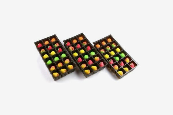 Bergen Marzipan 54 Piece Assorted Fruit Box Tray