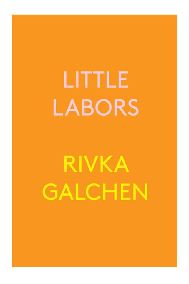 Little Labors by Rivka Galchen