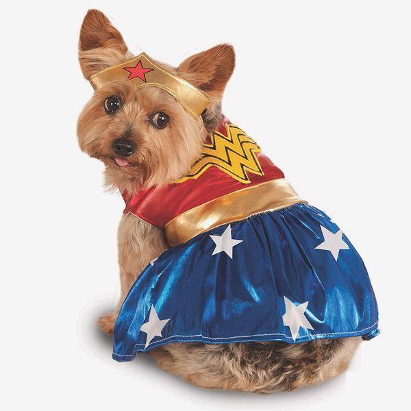 Official Wonder Woman Pet Dog Costume